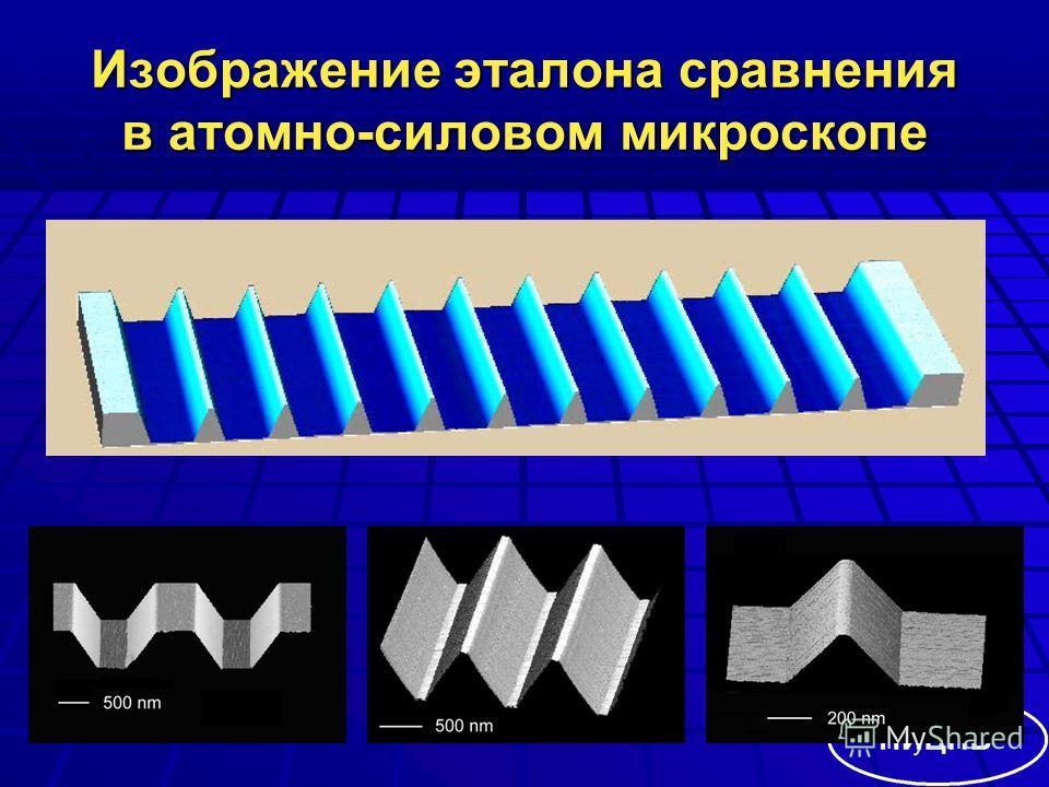 Изображение эталона сравнения в атомно-силовом микроскопе