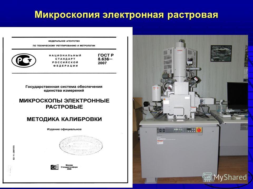 Микроскопия электронная растровая