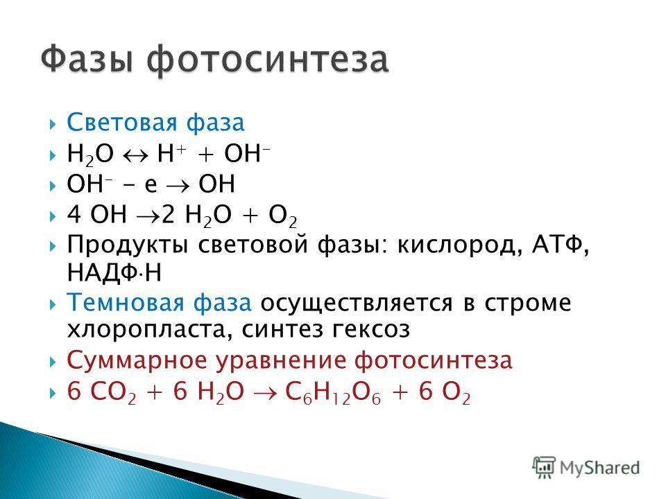 Световая фаза H 2 O H + + OH - OH - - e OH 4 OH 2 H 2 O + O 2 Продукты световой фазы: кислород, АТФ, НАДФ H Темновая фаза осуществляется в строме хлоропласта, синтез гексоз Суммарное уравнение фотосинтеза 6 CO 2 + 6 H 2 O C 6 H 12 O 6 + 6 O 2