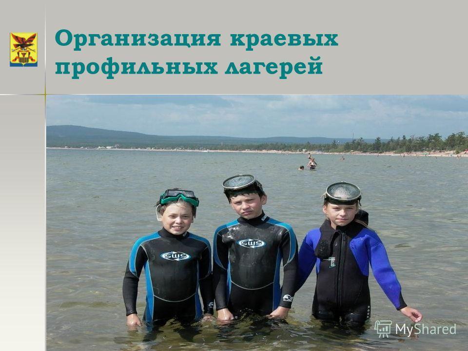 Организация краевых профильных лагерей