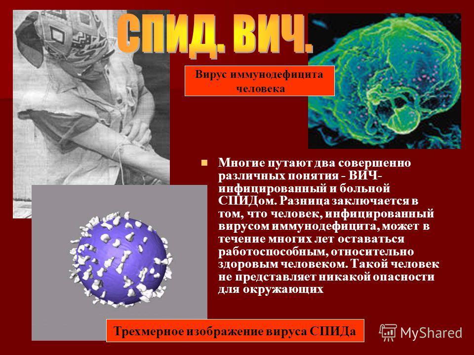 Многие путают два совершенно различных понятия - ВИЧ- инфицированный и больной СПИДом. Разница заключается в том, что человек, инфицированный вирусом иммунодефицита, может в течение многих лет оставаться работоспособным, относительно здоровым человек