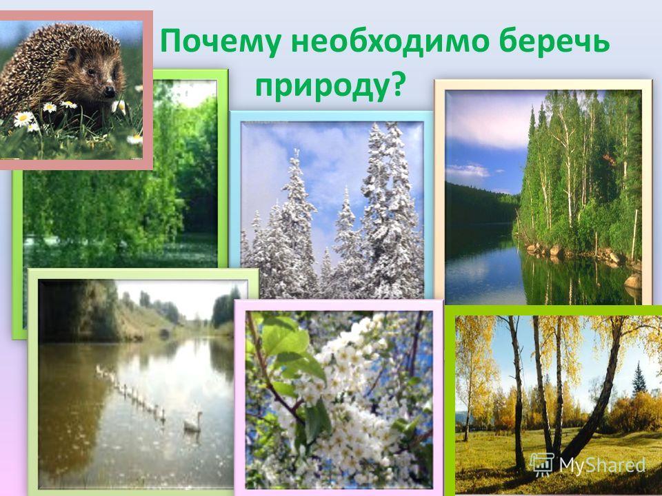 Почему необходимо беречь природу?