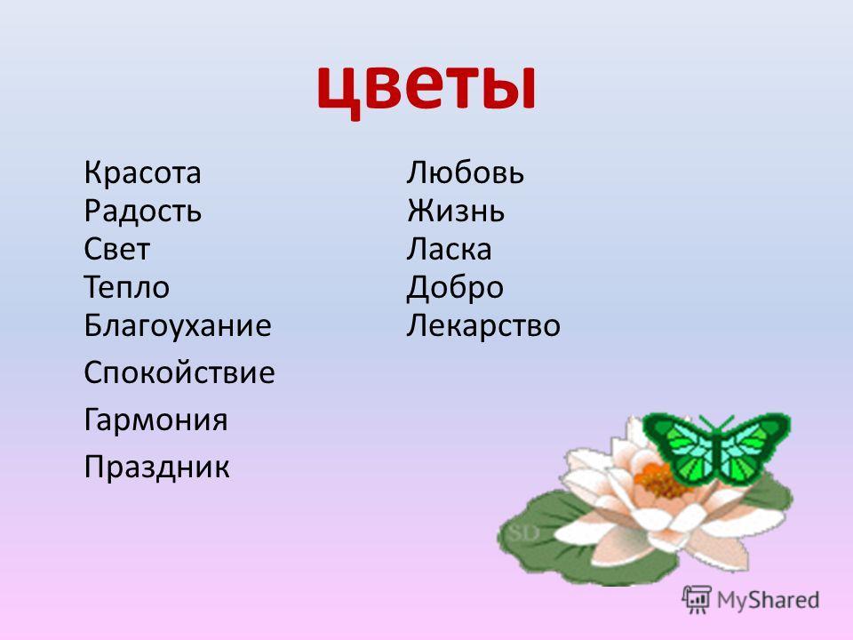 цветы Красота Радость Свет Тепло Благоухание Спокойствие Гармония Праздник Любовь Жизнь Ласка Добро Лекарство