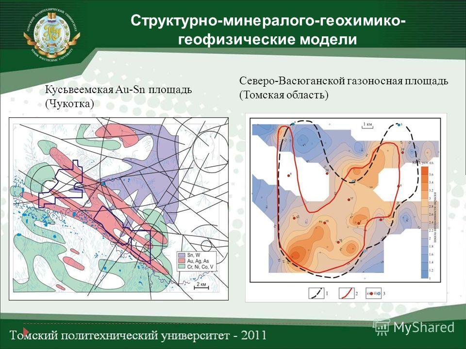 Структурно-минералого-геохимико- геофизические модели Кусьвеемская Au-Sn площадь (Чукотка) Северо-Васюганской газоносная площадь (Томская область)