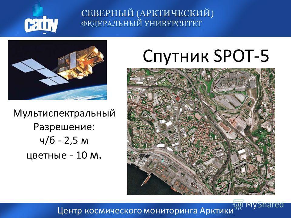 Спутник SPOT-5 Центр космического мониторинга Арктики Мультиспектральный Разрешение: ч/б - 2,5 м цветные - 10 м.