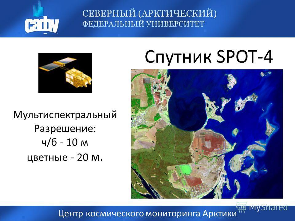 Спутник SPOT-4 Центр космического мониторинга Арктики Мультиспектральный Разрешение: ч/б - 10 м цветные - 20 м.