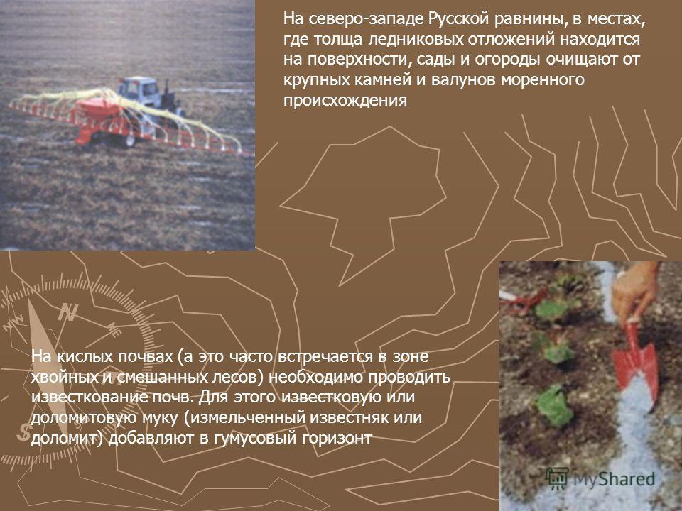 На северо-западе Русской равнины, в местах, где толща ледниковых отложений находится на поверхности, сады и огороды очищают от крупных камней и валунов моренного происхождения На кислых почвах (а это часто встречается в зоне хвойных и смешанных лесов