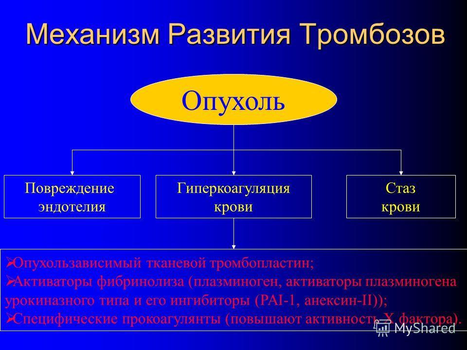 Механизм Развития Тромбозов Опухоль Гиперкоагуляция крови Повреждение эндотелия Стаз крови Опухользависимый тканевой тромбопластин; Активаторы фибринолиза (плазминоген, активаторы плазминогена урокиназного типа и его ингибиторы (PAI-1, анексин-II));
