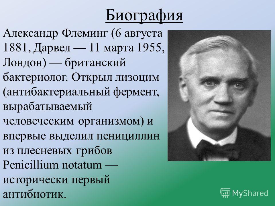Биография Александр Флеминг (6 августа 1881, Дарвел 11 марта 1955, Лондон) британский бактериолог. Открыл лизоцим (антибактериальный фермент, вырабатываемый человеческим организмом) и впервые выделил пенициллин из плесневых грибов Penicillium notatum