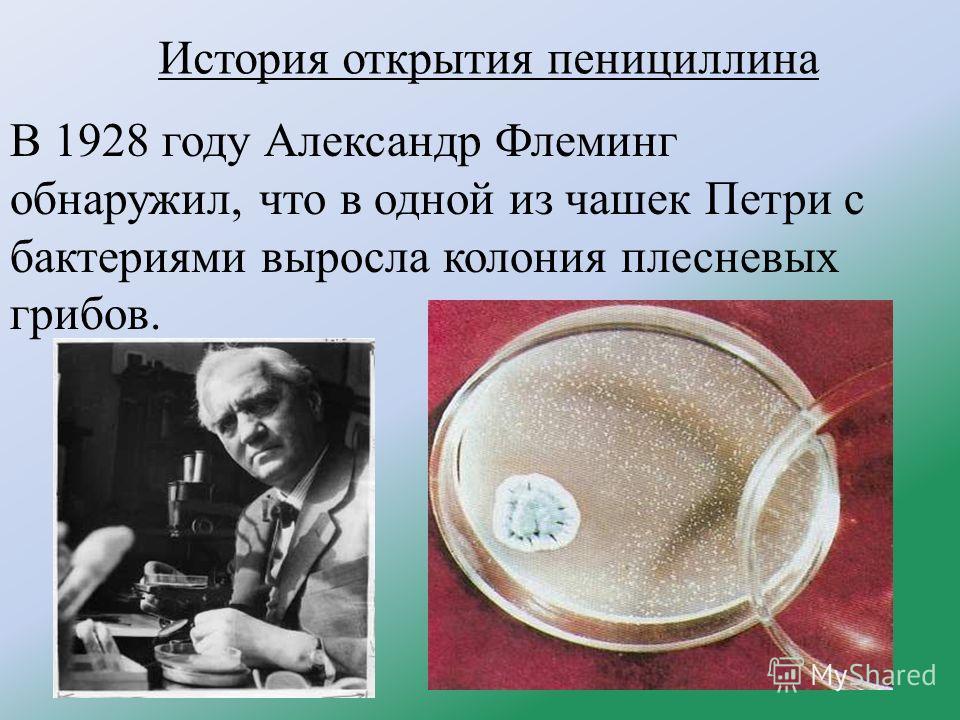 История открытия пенициллина В 1928 году Александр Флеминг обнаружил, что в одной из чашек Петри с бактериями выросла колония плесневых грибов.