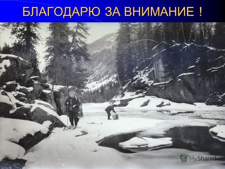 БЛАГОДАРЮ ЗА ВНИМАНИЕ ! м