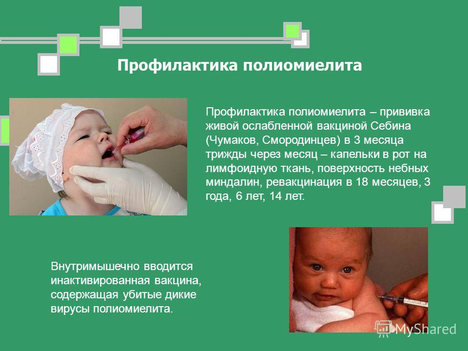 Профилактика полиомиелита Профилактика полиомиелита – прививка живой ослабленной вакциной Себина (Чумаков, Смородинцев) в 3 месяца трижды через месяц – капельки в рот на лимфоидную ткань, поверхность небных миндалин, ревакцинация в 18 месяцев, 3 года