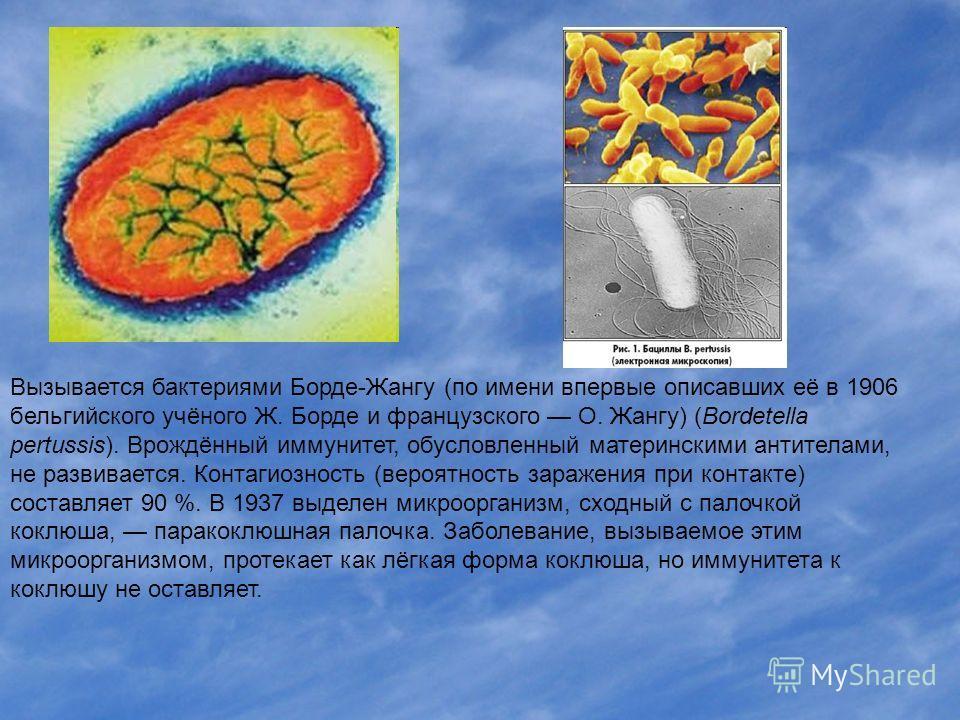 Вызывается бактериями Борде-Жангу (по имени впервые описавших её в 1906 бельгийского учёного Ж. Борде и французского О. Жангу) (Bordetella pertussis). Врождённый иммунитет, обусловленный материнскими антителами, не развивается. Контагиозность (вероят