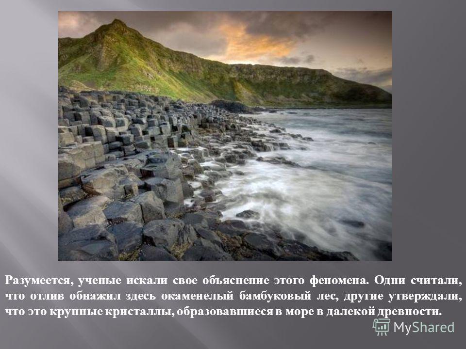 Разумеется, ученые искали свое объяснение этого феномена. Одни считали, что отлив обнажил здесь окаменелый бамбуковый лес, другие утверждали, что это крупные кристаллы, образовавшиеся в море в далекой древности.
