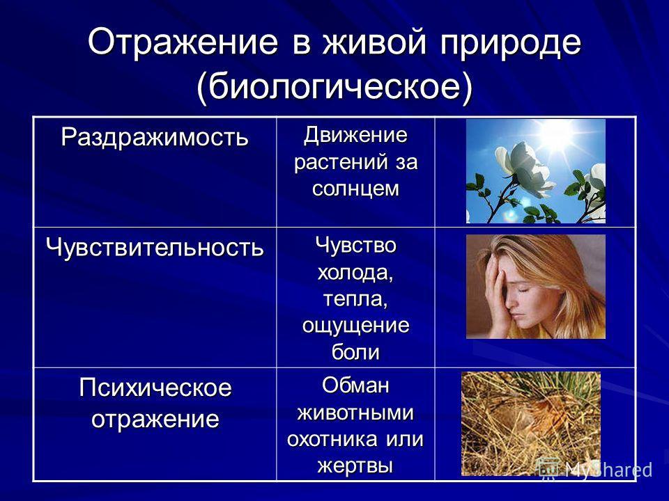 Отражение в живой природе (биологическое) Раздражимость Движение растений за солнцем Чувствительность Чувство холода, тепла, ощущение боли Психическое отражение Обман животными охотника или жертвы