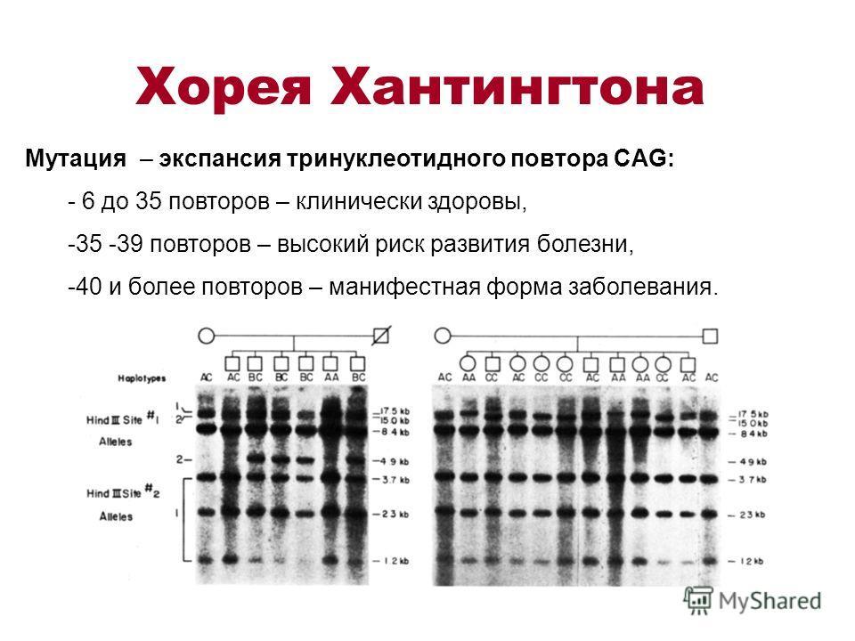 Хорея Хантингтона Мутация – экспансия тринуклеотидного повтора CAG: - 6 до 35 повторов – клинически здоровы, -35 -39 повторов – высокий риск развития болезни, -40 и более повторов – манифестная форма заболевания.