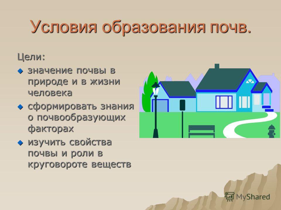 Условия образования почв. Цели: значение почвы в природе и в жизни человека значение почвы в природе и в жизни человека сформировать знания о почвообразующих факторах сформировать знания о почвообразующих факторах изучить свойства почвы и роли в круг