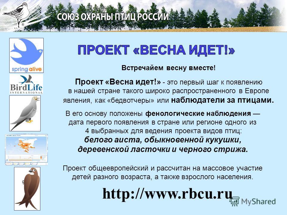 Встречайем весну вместе! Проект «Весна идет!» - это первый шаг к появлению в нашей стране такого широко распространенного в Европе явления, как «бедвотчеры» или наблюдатели за птицами. http://www.rbcu.ru В его основу положены фенологические наблюдени