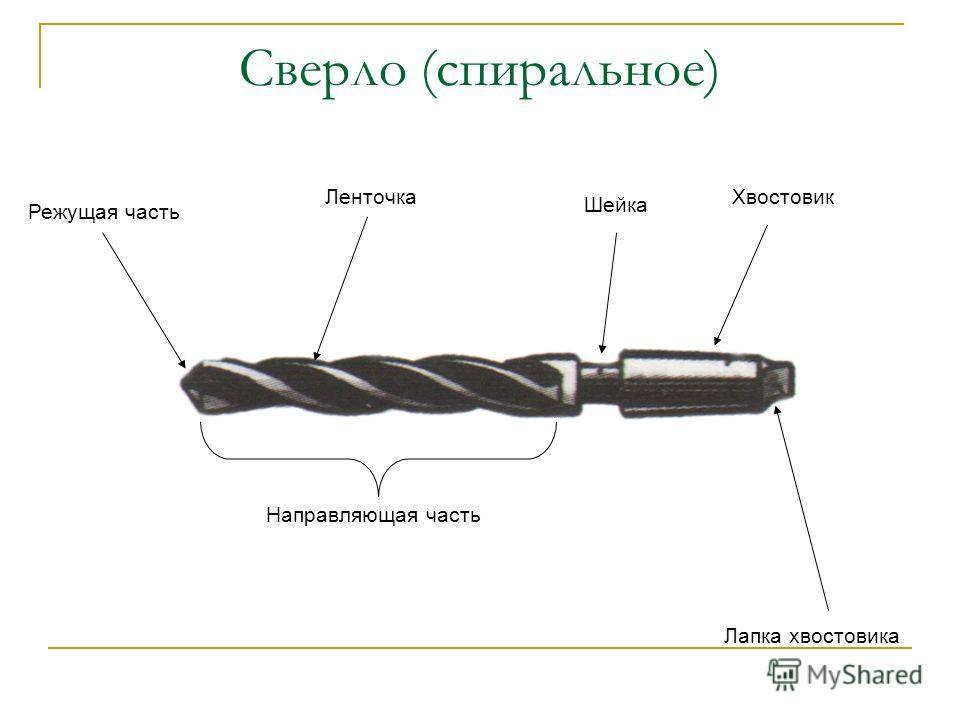 Сверло (спиральное) Режущая часть Ленточка Шейка Хвостовик Направляющая часть Лапка хвостовика