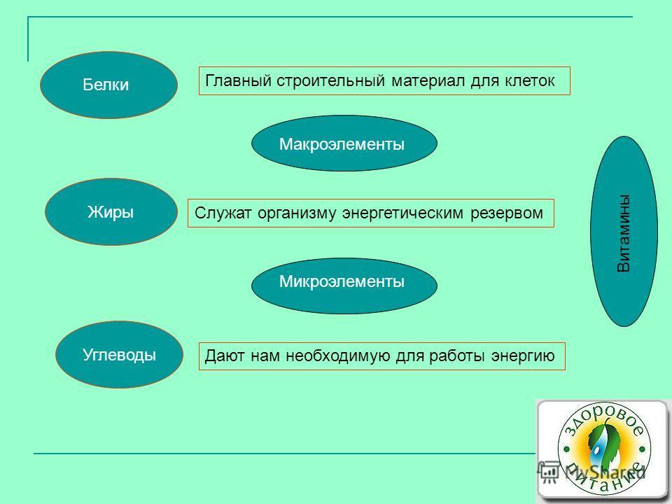 Белки Жиры Углеводы Главный строительный материал для клеток Служат организму энергетическим резервом Дают нам необходимую для работы энергию Микроэлементы Макроэлементы Витамины