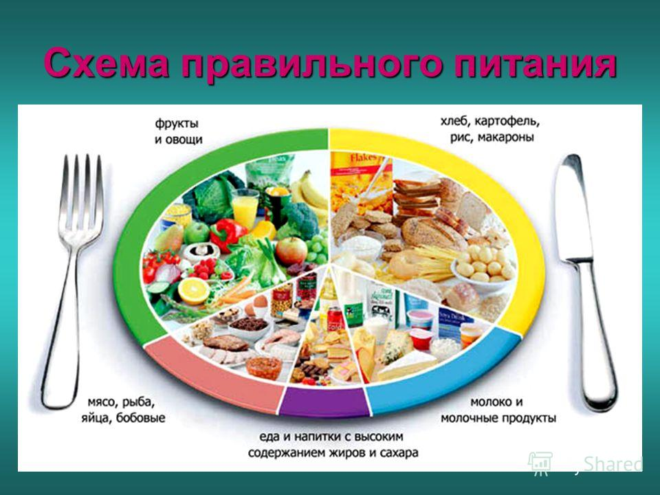 схема правильного питания для похудения на неделю