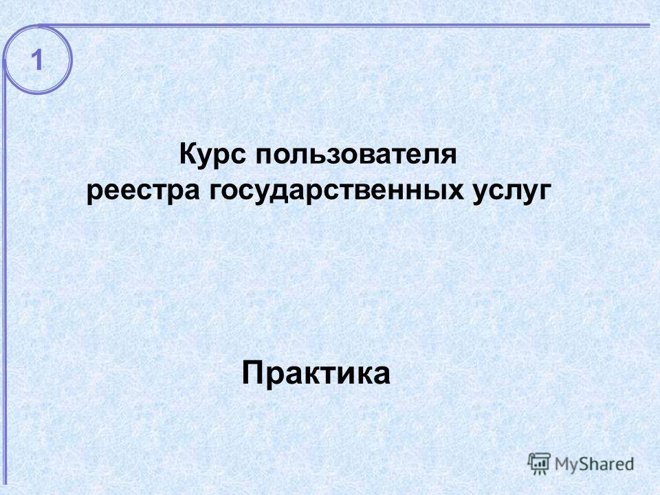 Практика Курс пользователя реестра государственных услуг 1
