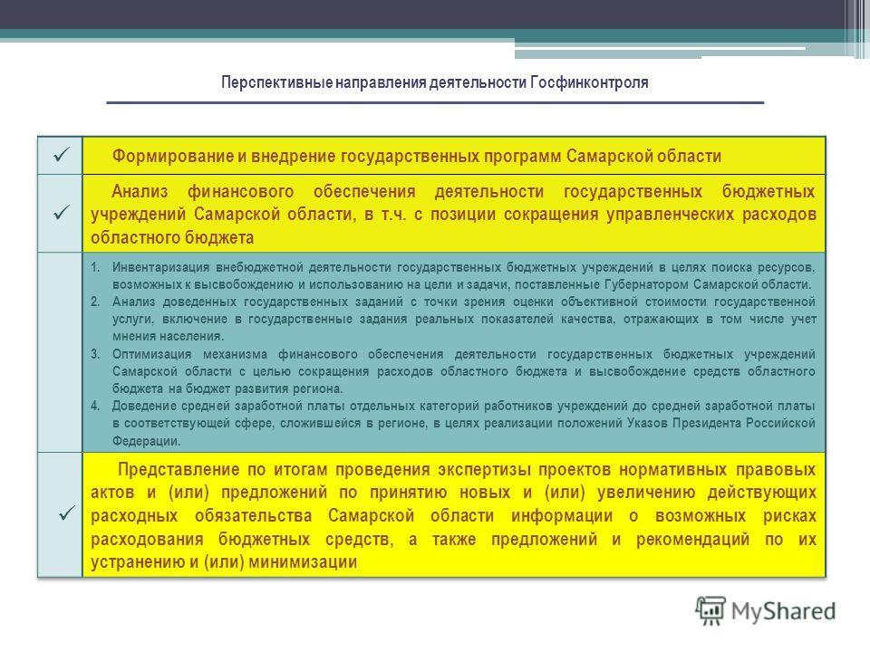Перспективные направления деятельности Госфинконтроля