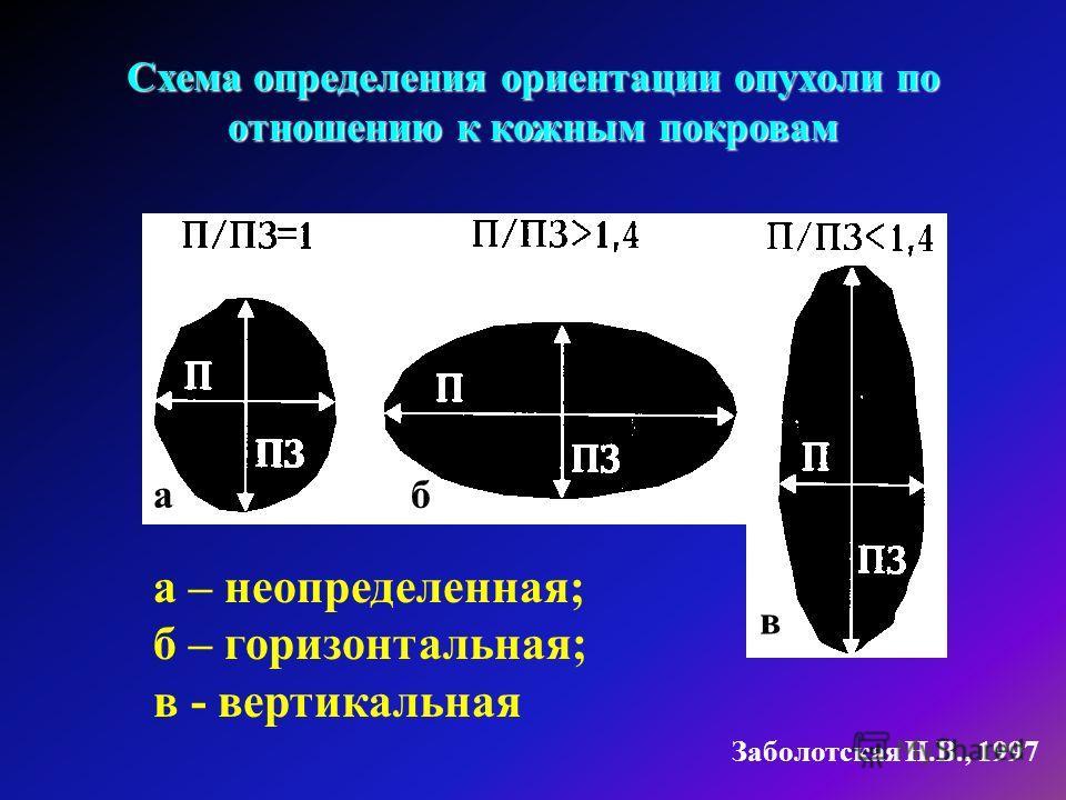 Заболотская Н.В., 1997 Схема определения ориентации опухоли по отношению к кожным покровам а – неопределенная; б – горизонтальная; в - вертикальная аб в