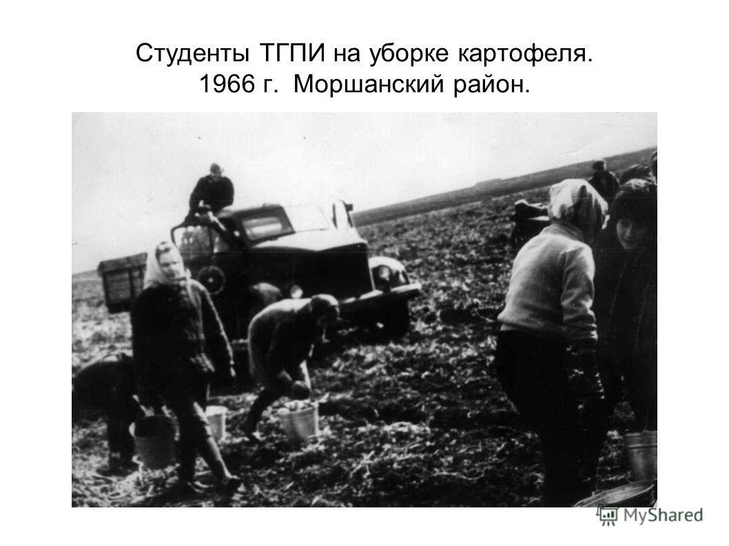 Студенты ТГПИ на уборке картофеля. 1966 г. Моршанский район.