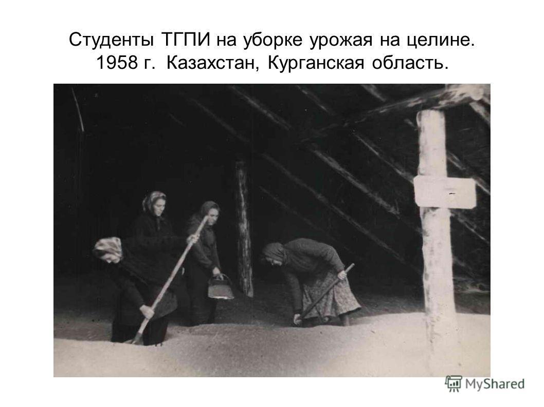 Студенты ТГПИ на уборке урожая на целине. 1958 г. Казахстан, Курганская область.