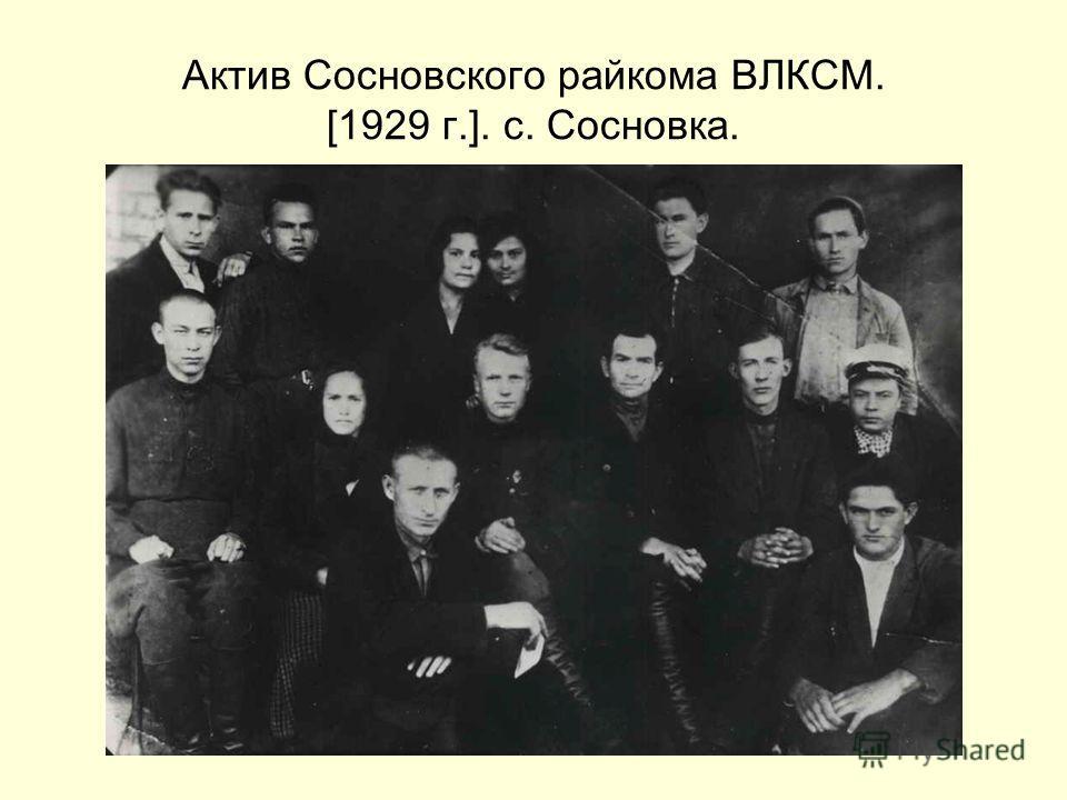 Актив Сосновского райкома ВЛКСМ. [1929 г.]. с. Сосновка.