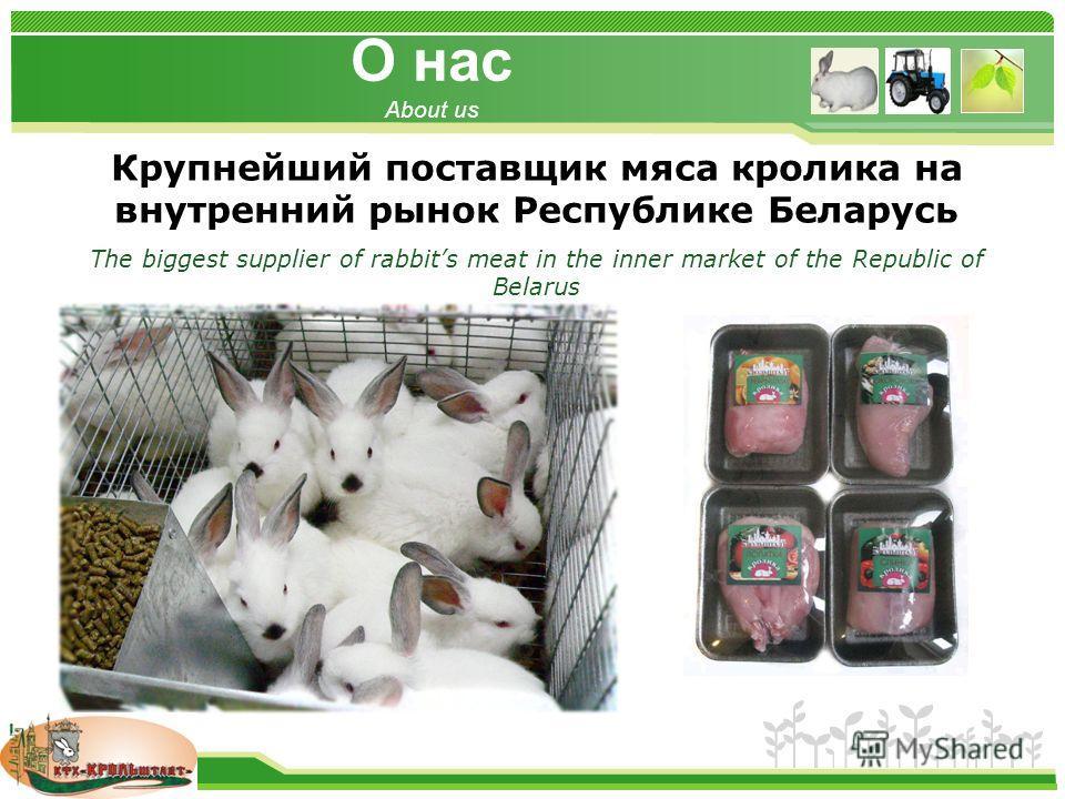 www.themegallery.com О нас About us Крупнейший поставщик мяса кролика на внутренний рынок Республике Беларусь The biggest supplier of rabbits meat in the inner market of the Republic of Belarus