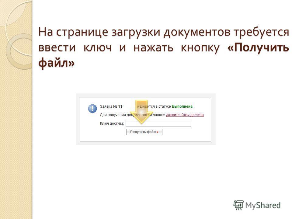На странице загрузки документов требуется ввести ключ и нажать кнопку « Получить файл »