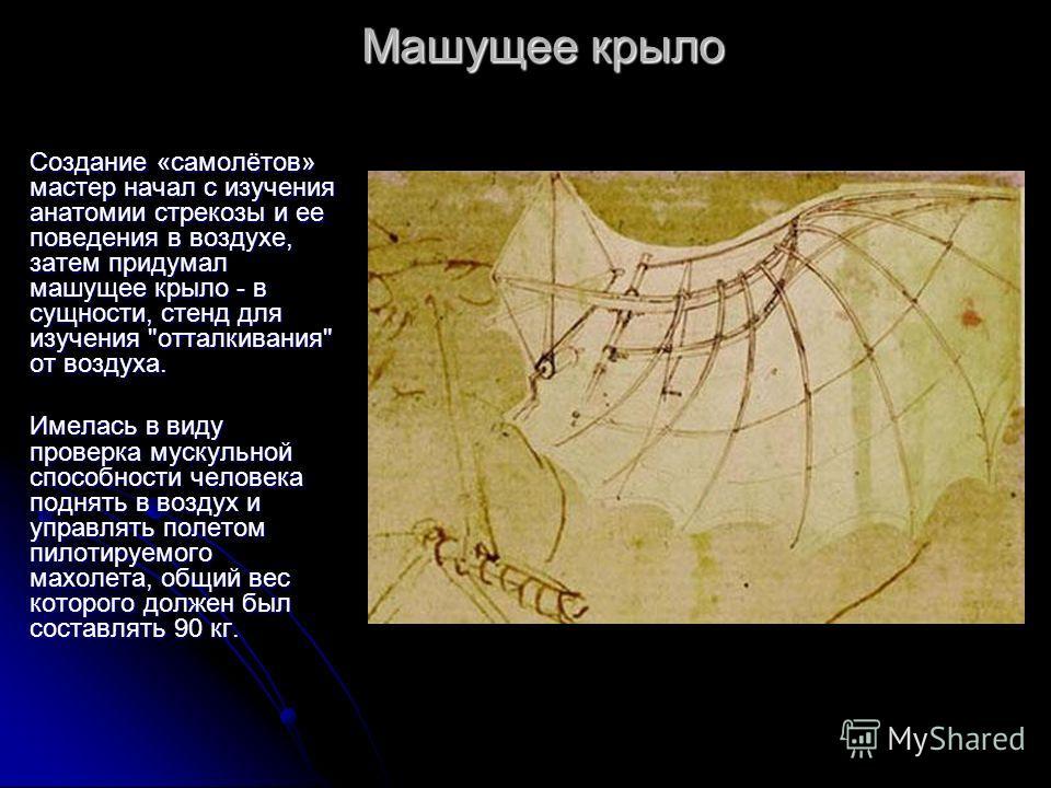 Создание «самолётов» мастер начал с изучения анатомии стрекозы и ее поведения в воздухе, затем придумал машущее крыло - в сущности, стенд для изучения