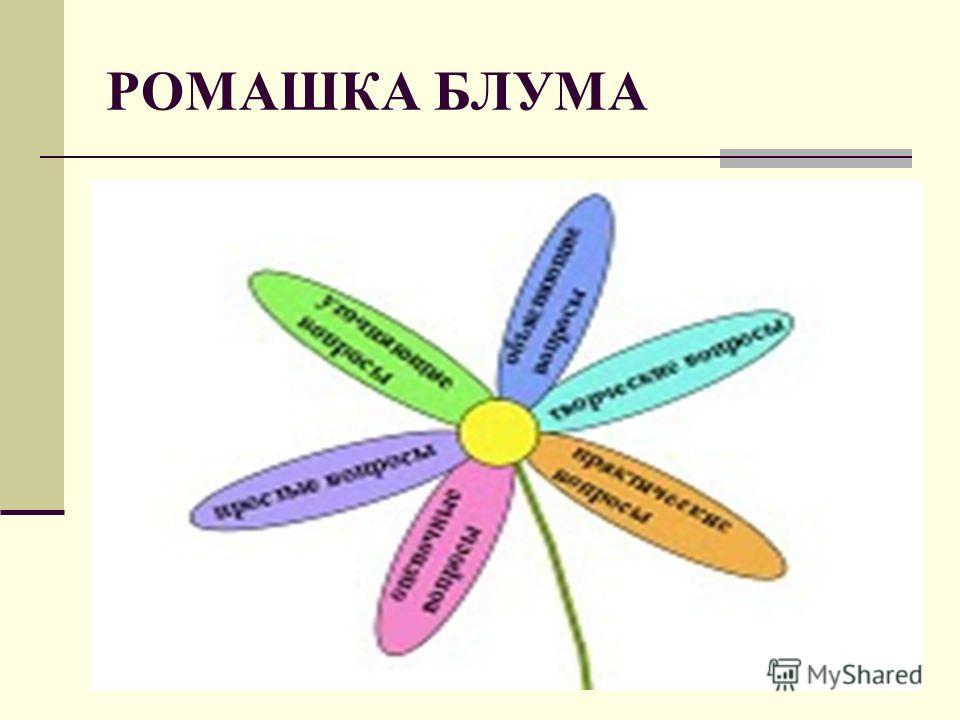 РОМАШКА БЛУМА 16