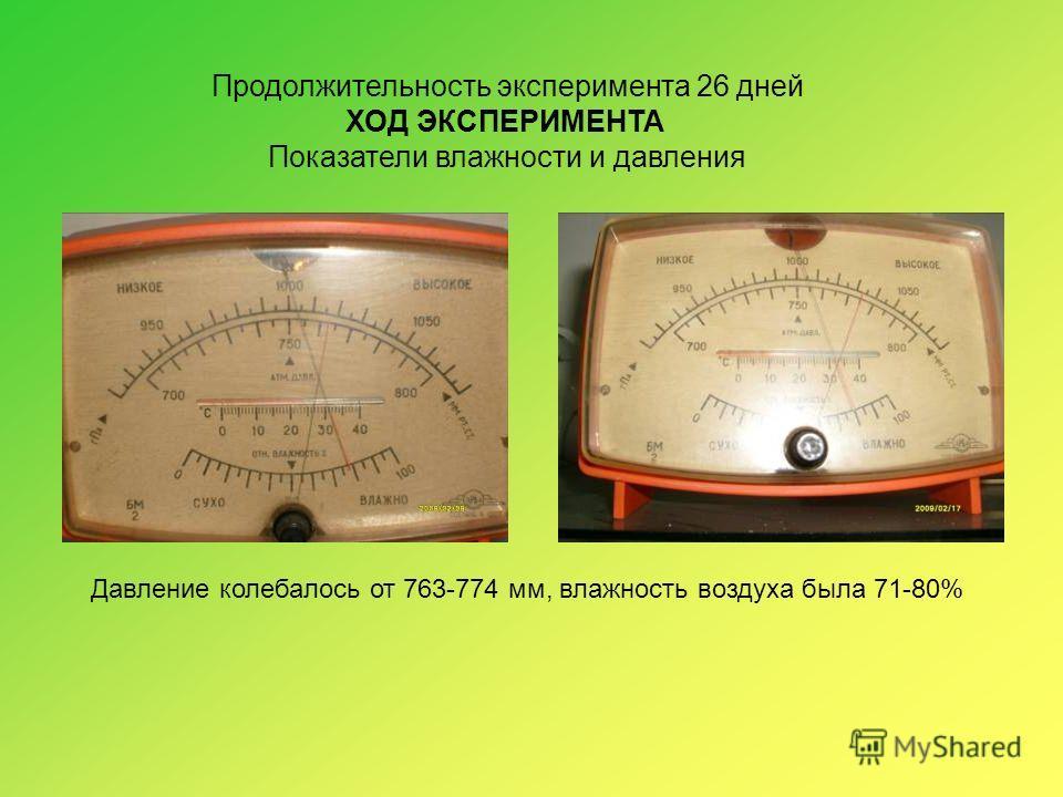 Продолжительность эксперимента 26 дней ХОД ЭКСПЕРИМЕНТА Показатели влажности и давления Давление колебалось от 763-774 мм, влажность воздуха была 71-80%