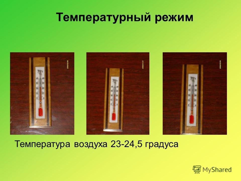 Температурный режим Температура воздуха 23-24,5 градуса