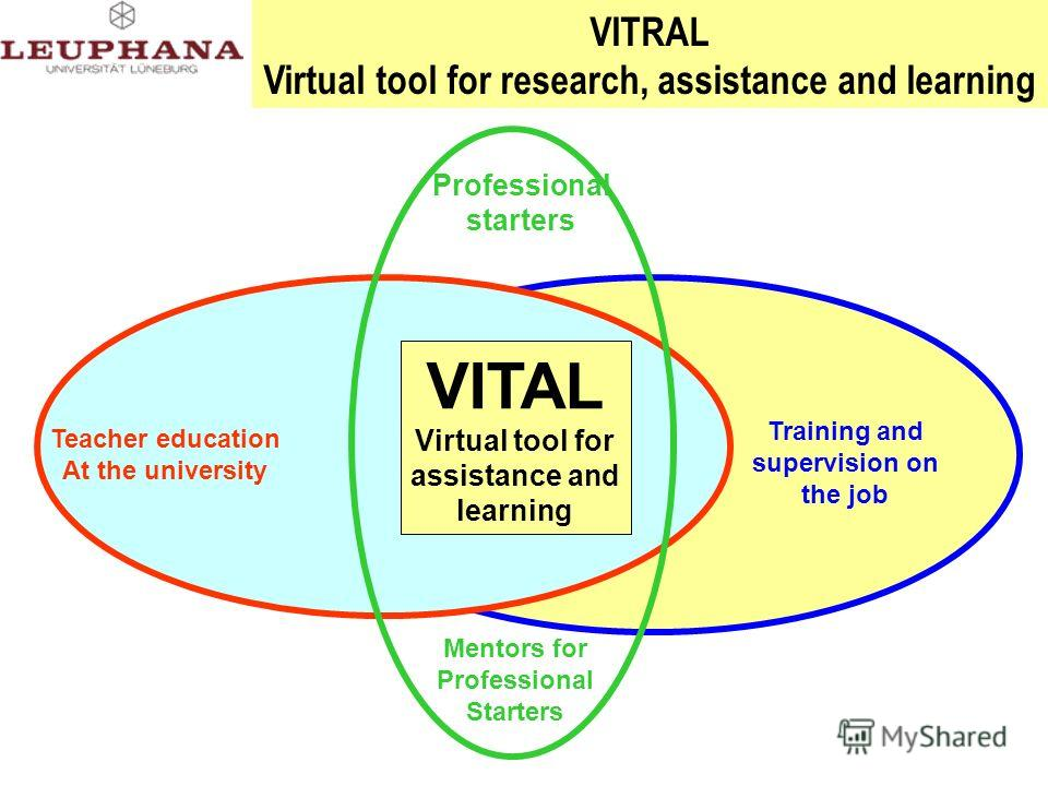 Lehrer- forum Training and supervision on the job Teacher education At the university Professional starters Mentors for Professional Starters VITRAL Virtual tool for research, assistance and learning VITAL Virtual tool for assistance and learning