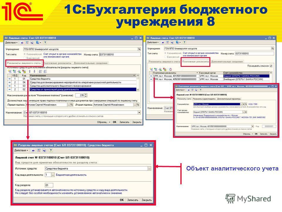 1С:Бухгалтерия бюджетного учреждения 8 Объект аналитического учета