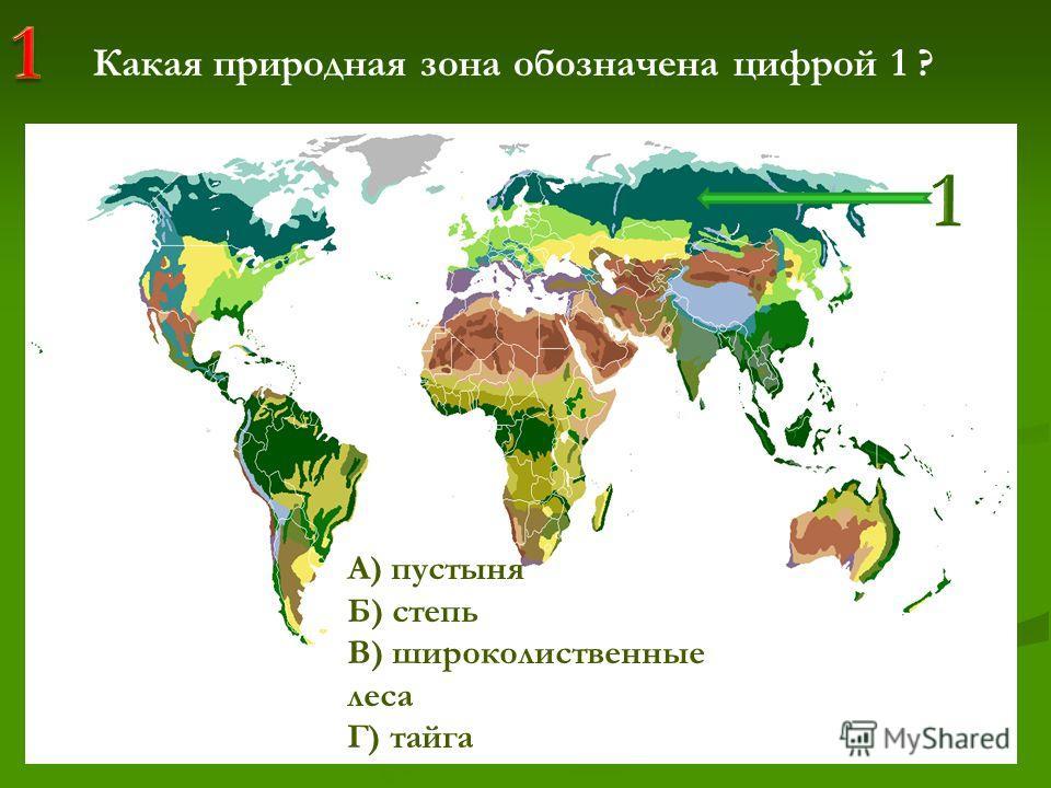 жжжжжжж жжжжжжж жжжжжжж жжжжжжж жжжжжжж жжжжжжж жжжжжжж ж Какая природная зона обозначена цифрой 1 ? А) пустыня Б) степь В) широколиственные леса Г) тайга