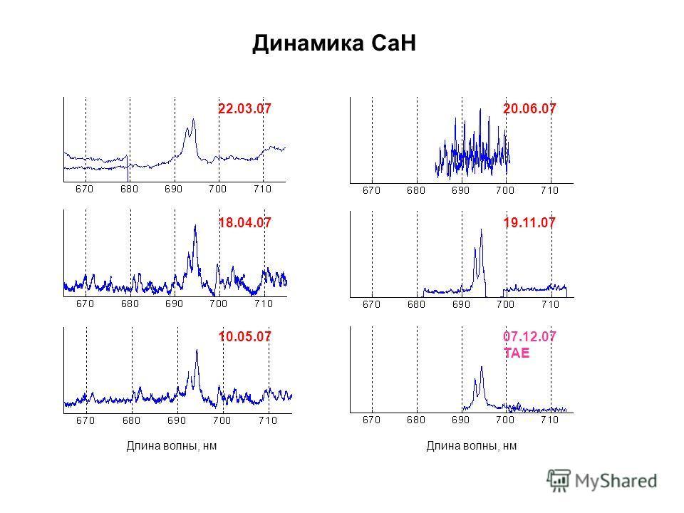 Длина волны, нм 22.03.07 18.04.07 10.05.07 20.06.07 19.11.07 07.12.07 TAE Динамика CaH