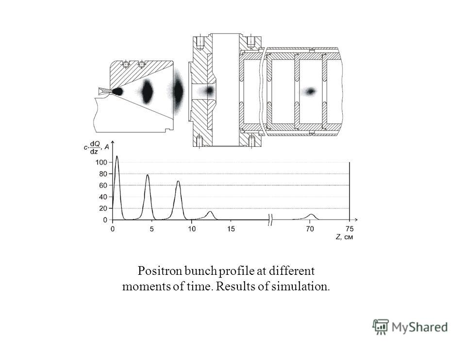 Positron bunch profile at different moments of time. Results of simulation.