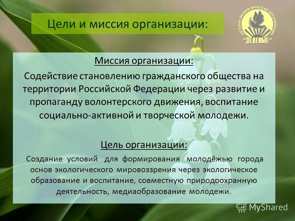 Цели и миссия организации: Миссия организации: Содействие становлению гражданского общества на территории Российской Федерации через развитие и пропаганду волонтерского движения, воспитание социально-активной и творческой молодежи. Цель организации: