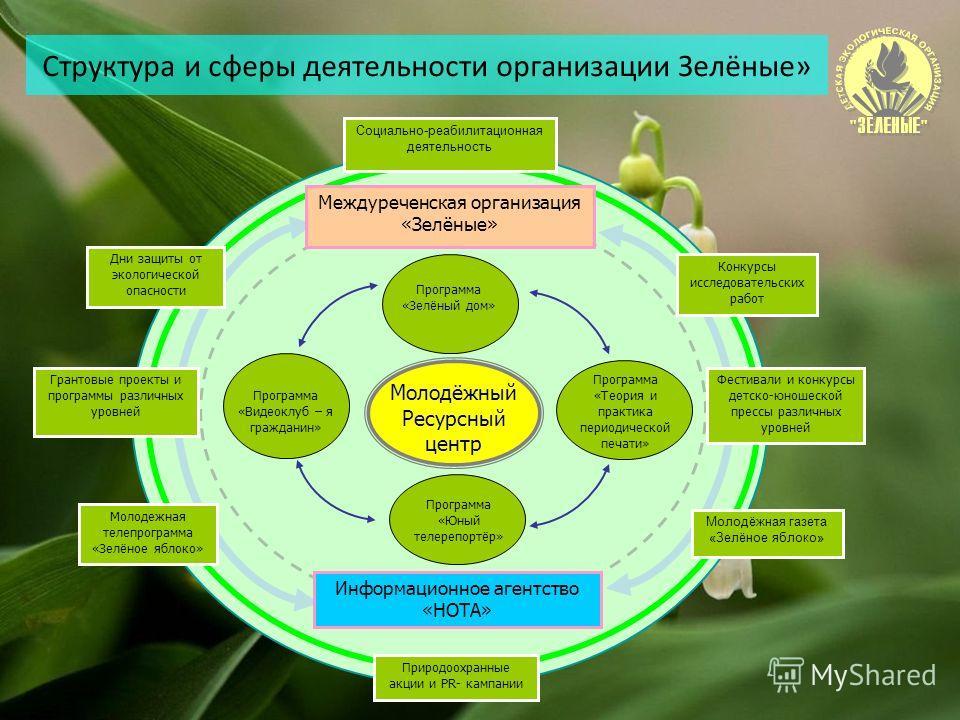 Структура и сферы деятельности организации Зелёные» Молодёжный Ресурсный центр Программа «Зелёный дом» Программа «Видеоклуб – я гражданин» Программа «Юный телерепортёр» Программа «Теория и практика периодической печати» Междуреченская организация «Зе