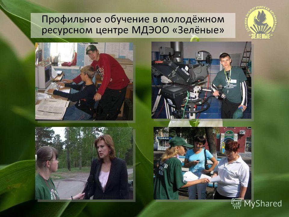 Профильное обучение в молодёжном ресурсном центре МДЭОО «Зелёные»
