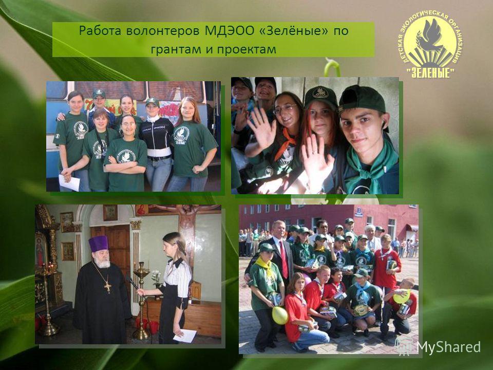 Работа волонтеров МДЭОО «Зелёные» по грантам и проектам