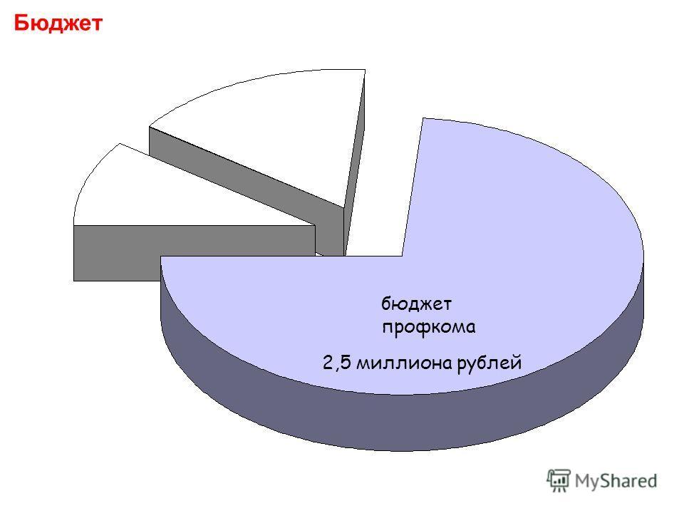Бюджет бюджет профкома 2,5 миллиона рублей