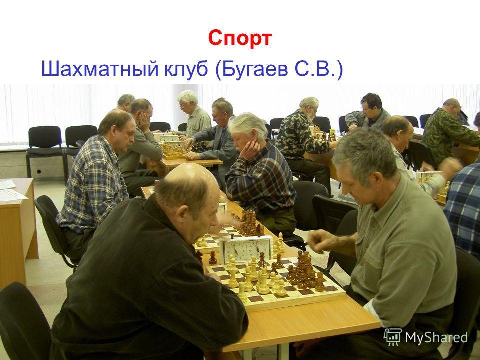 Спорт Шахматный клуб (Бугаев С.В.)