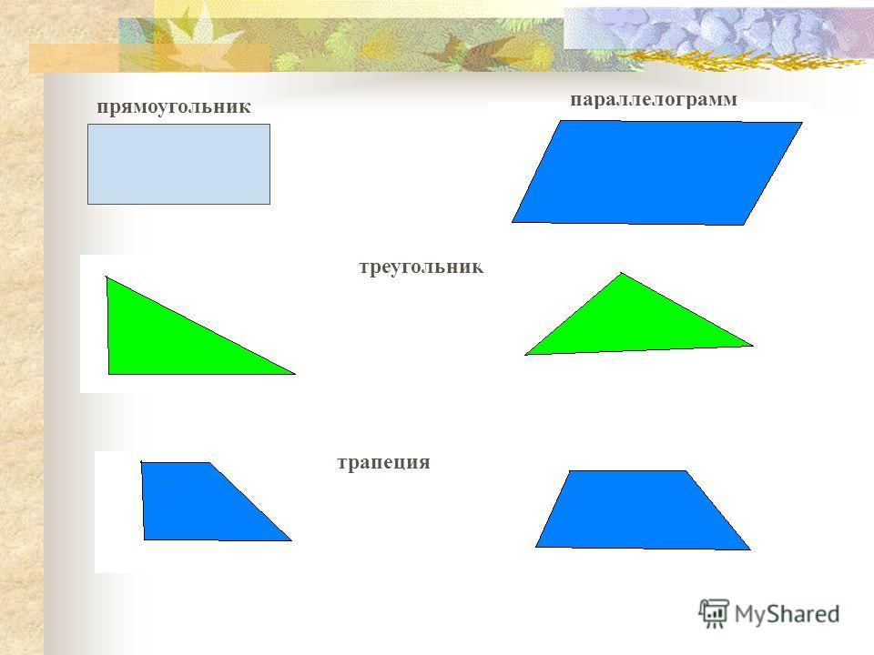 прямоугольник треугольник параллелограмм трапеция