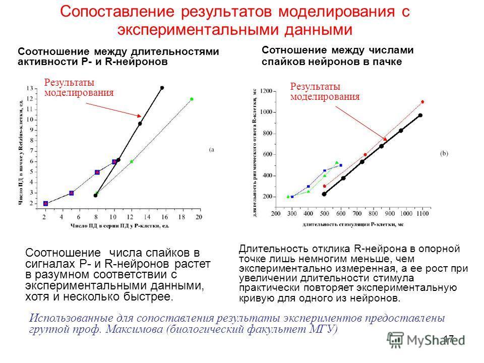 17 Сопоставление результатов моделирования с экспериментальными данными Соотношение между длительностями активности P- и R-нейронов Сотношение между числами спайков нейронов в пачке Использованные для сопоставления результаты экспериментов предоставл